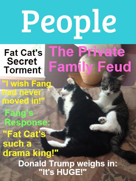FangFatCatMagazine1