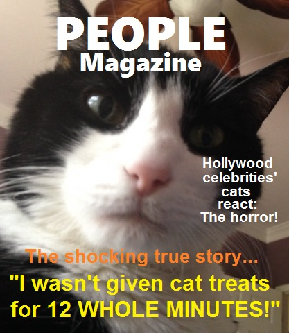 FatCatPeopleMagazine